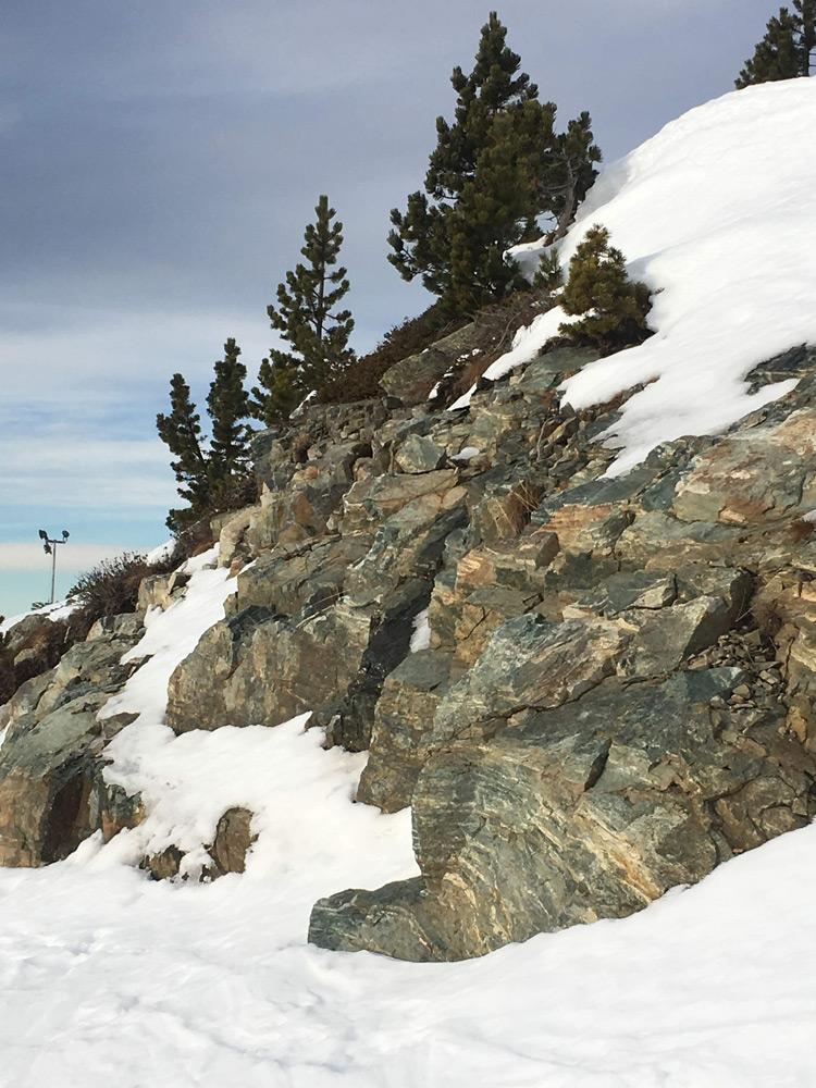 Environnement où poussent les sempervivum Alpes hiver